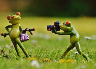 jak pozować do zdjęć - tło